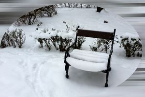 New snow on the armchair
