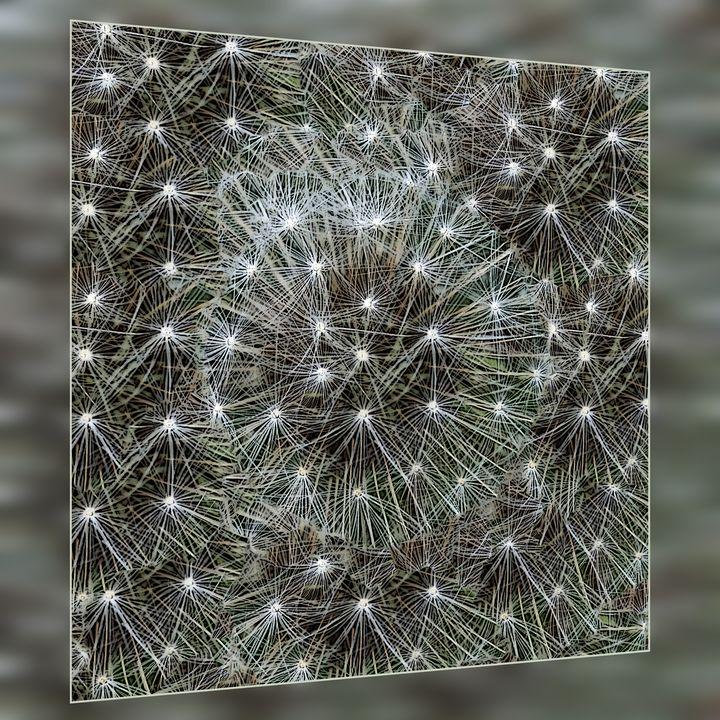 Spinning dandelion puff - feiermar