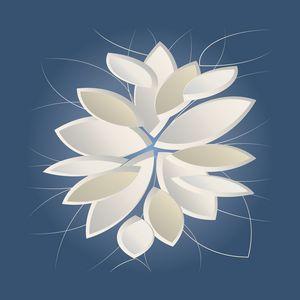 white stone petals