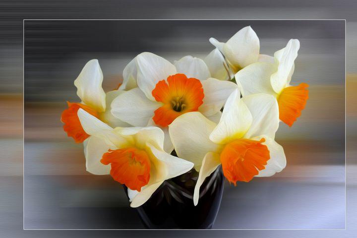 Early spring daffodils - feiermar