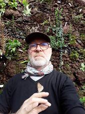 Philippe LACÔTE