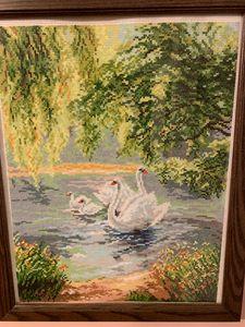 Boston Common Swans