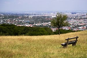 Look to Vienna from the hill
