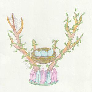 Antlers & Crystals