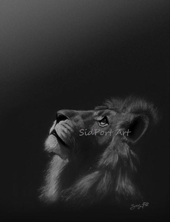 Cecil the Lion (signed & framed) - SidPort Art