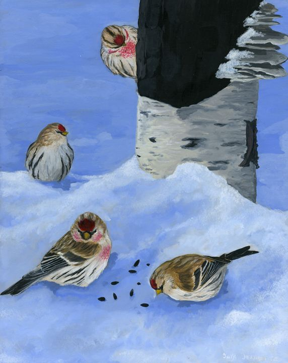 Redpolls in the Afternoon - Sara Jeanette Schlumbohm