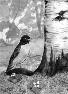 Robin Ink Wash