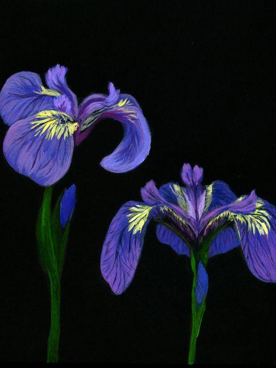 Irises in the Peony Field - Sara Jeanette Schlumbohm
