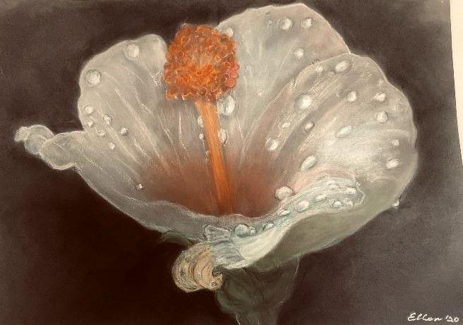 Mother Natures' Magic - Ellen Nicholls WA Artist