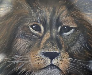 King of the jungle - Ellen Nicholls WA Artist