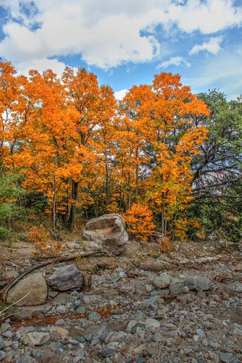 Fall Comes To Miller Canyon - Lion's Gate and Open Road Photography