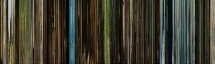 Jojo Rabbit (2019) - Color of Cinema