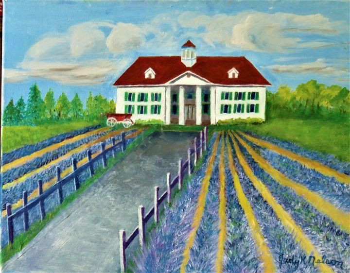 Lavender Fields in WA - JNelsonGallery