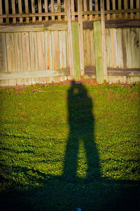 Shadow of lovers - Hartshorn Studios