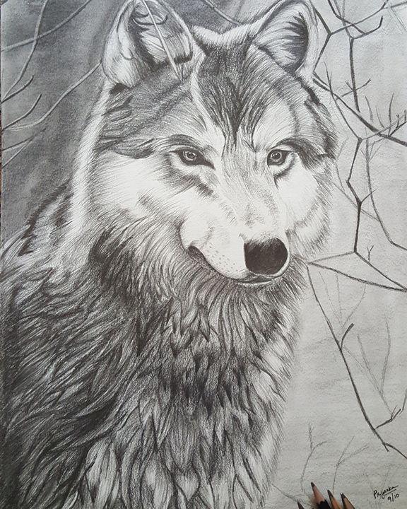The Lone Wolf - Priyanka Murthy