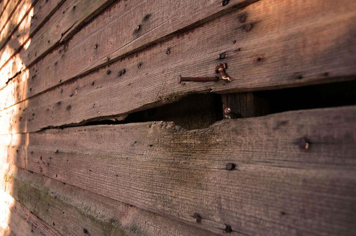 Weathered Wood - Erin McCabe