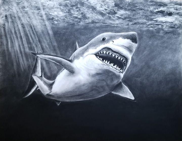 Majestic Shark - Haley R. Art