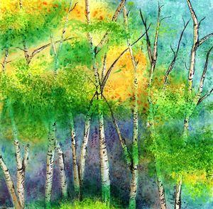 Bright Birch