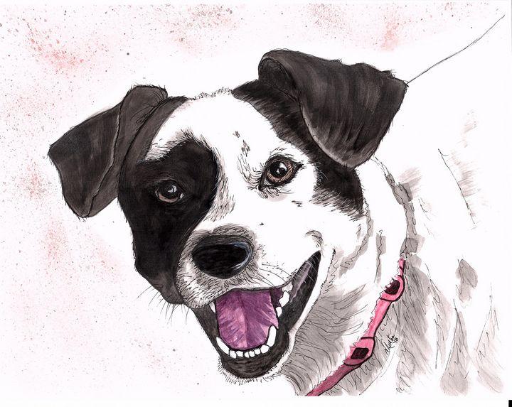 Black & White Cutie - Nancy Austin Art