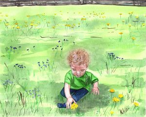 Discovering dandelions
