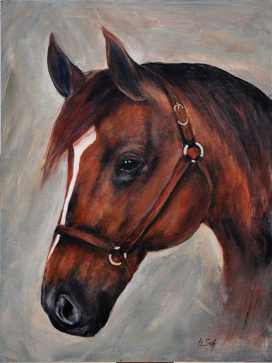 Brown Horse - Hadley Smith