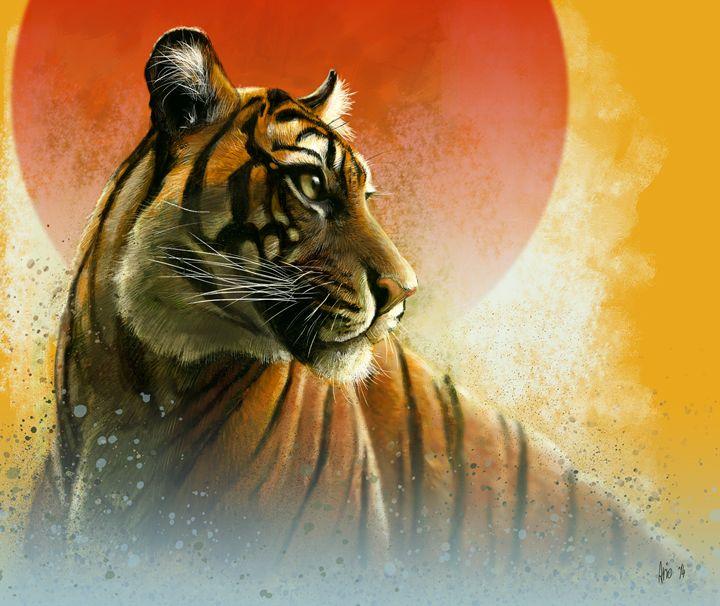 Tiger - Vanderwyst