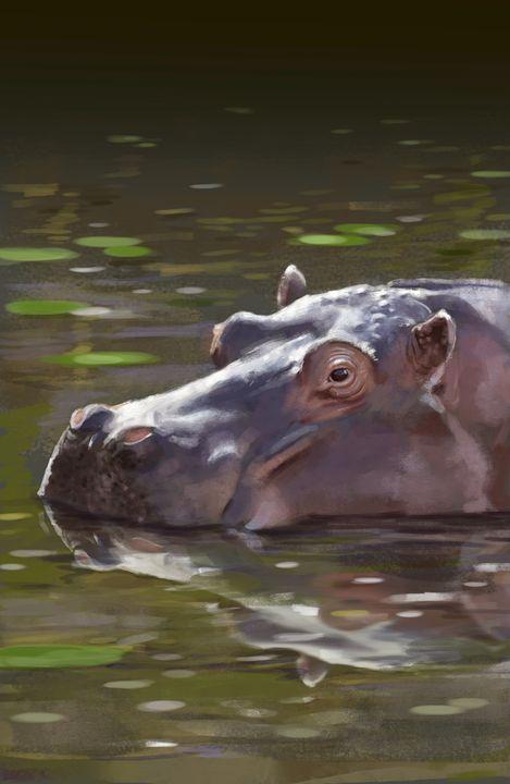 Hippo - Vanderwyst