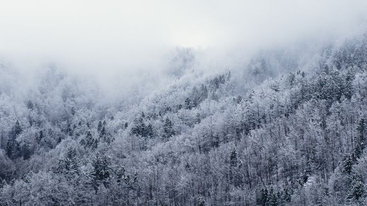Winter Cometh - Mixed Imagery