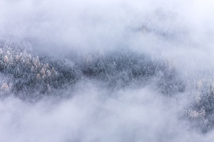 Beneath The Fog - Mixed Imagery