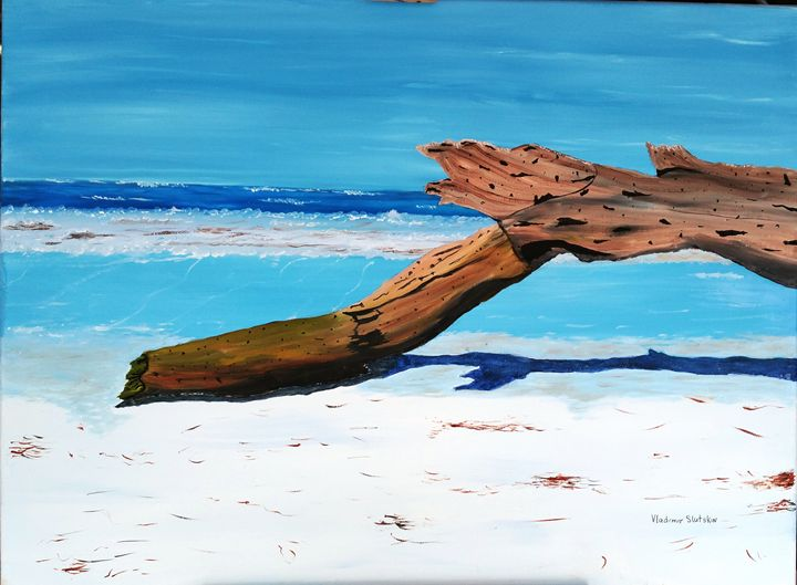Driftwood on the beach - Paint by Vlad