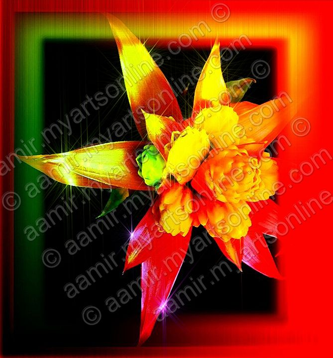 Red-Yellow-Green Flower - Aamir Show