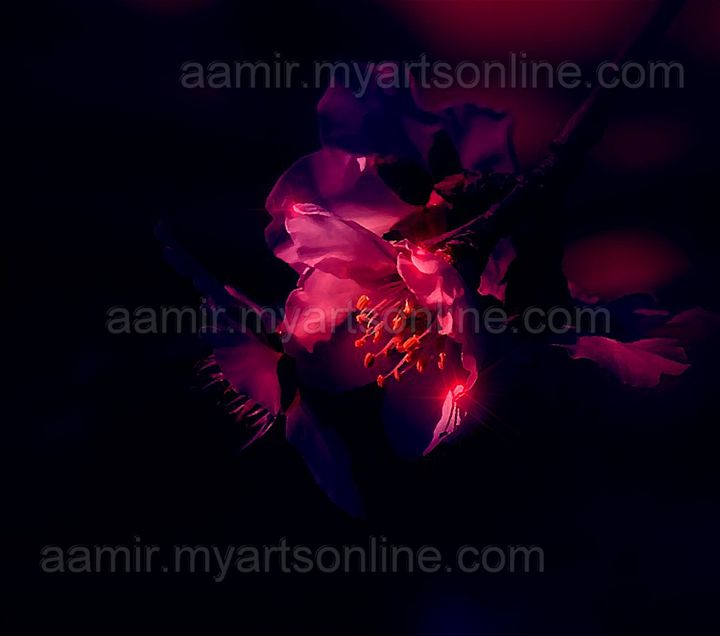*Night Flower* linen canvas artwork - Aamir Show