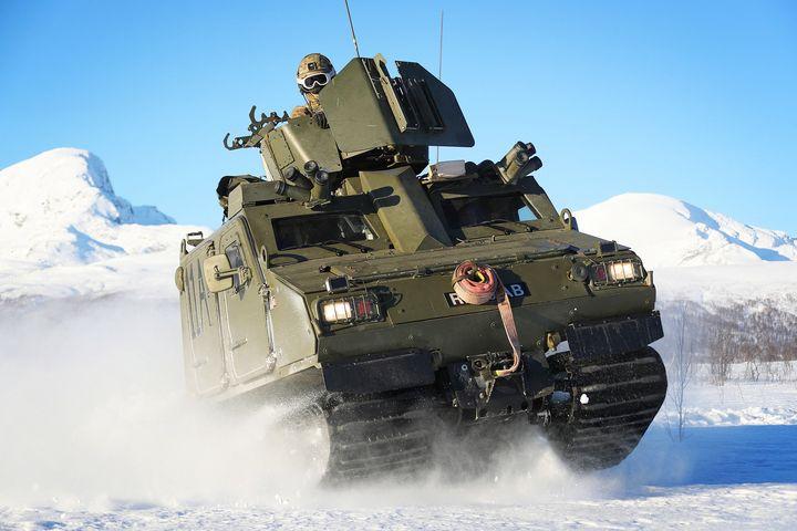 Viking BVS10 - MILITARY PHOTO PRINTS  UK