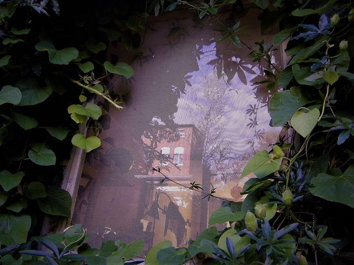 cosy portal - unknownApe