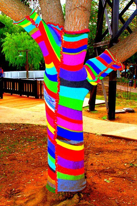 Sock Tree in Old Poway Park - Jeffrey Schermer Photography