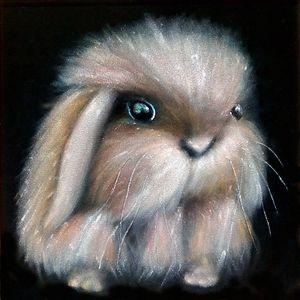 Rabbit with cosmic eyes