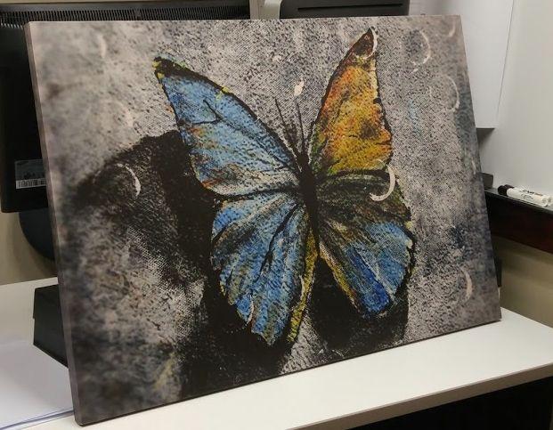 The modern butterfly - Erick Martin