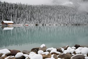 Snowy Lake Louise II
