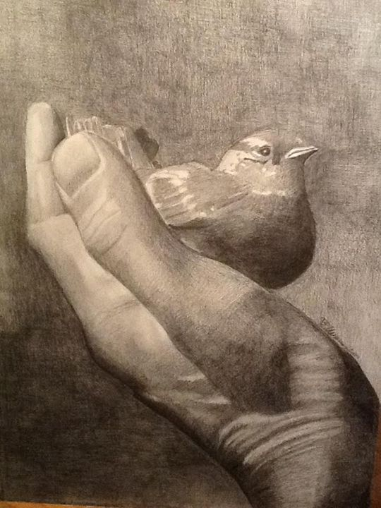 Bird in Hand Sketch - Tending the Heart With Art