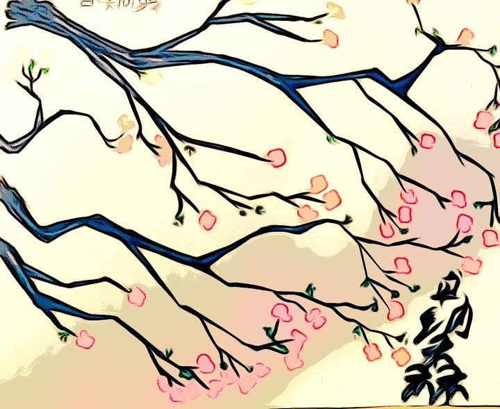 Flowering of cherry tree - Jonathan