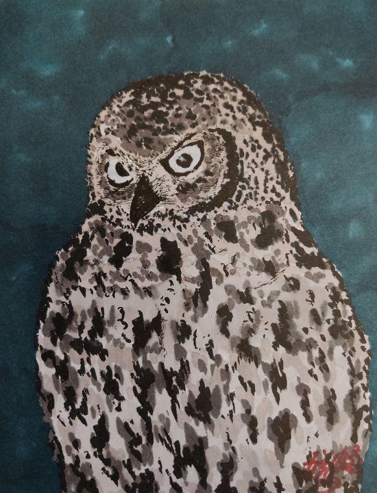The owl - Jonathan
