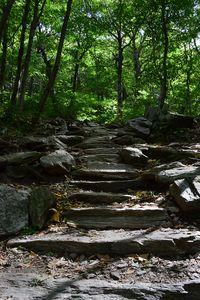 Vermont Stone Steps