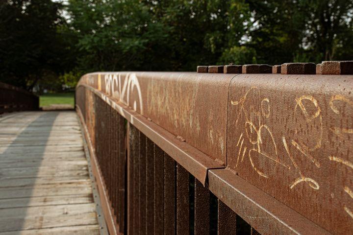Evanston Trails - Madeline Hertz