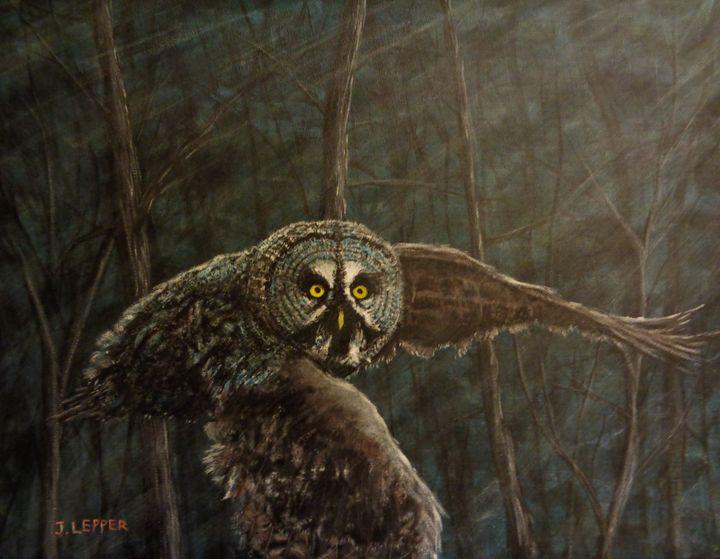 Twilight: Owl of Ga' Hoole - Jack Lepper