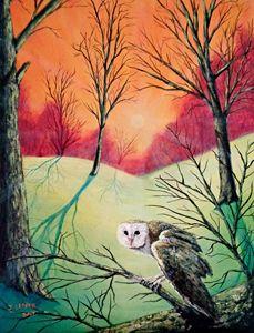 Soren: Owl of Ga' Hoole (2017)