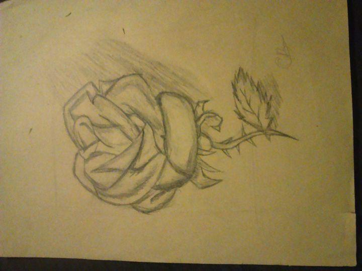 Rose - Chris B.