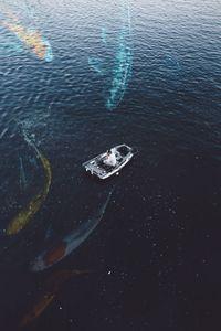 Ocean's Friend