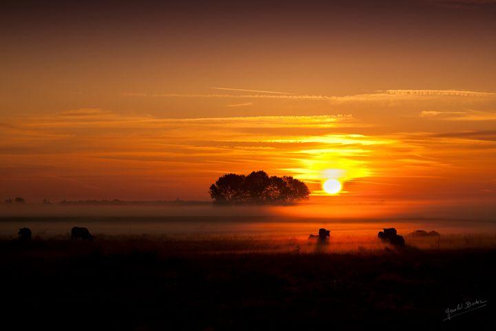 Enigmatic Mist - Gerald Bohic