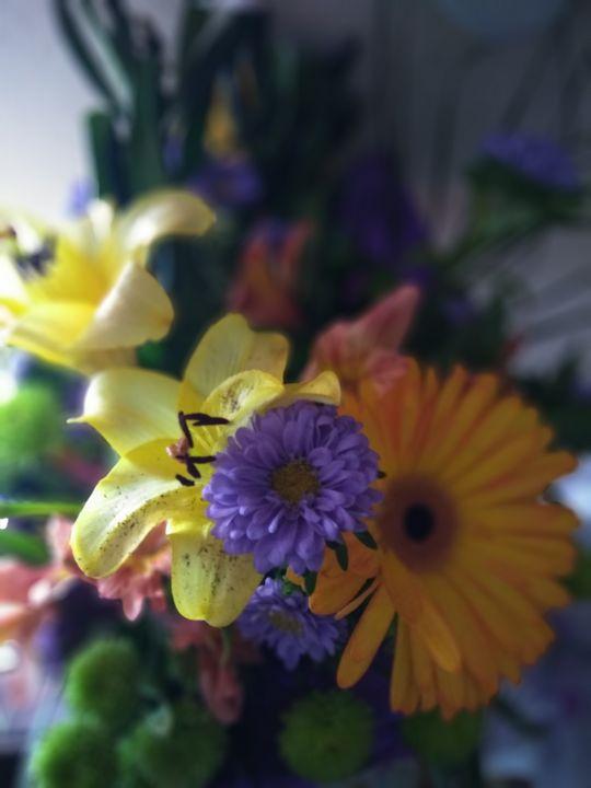 Flowers - RNG